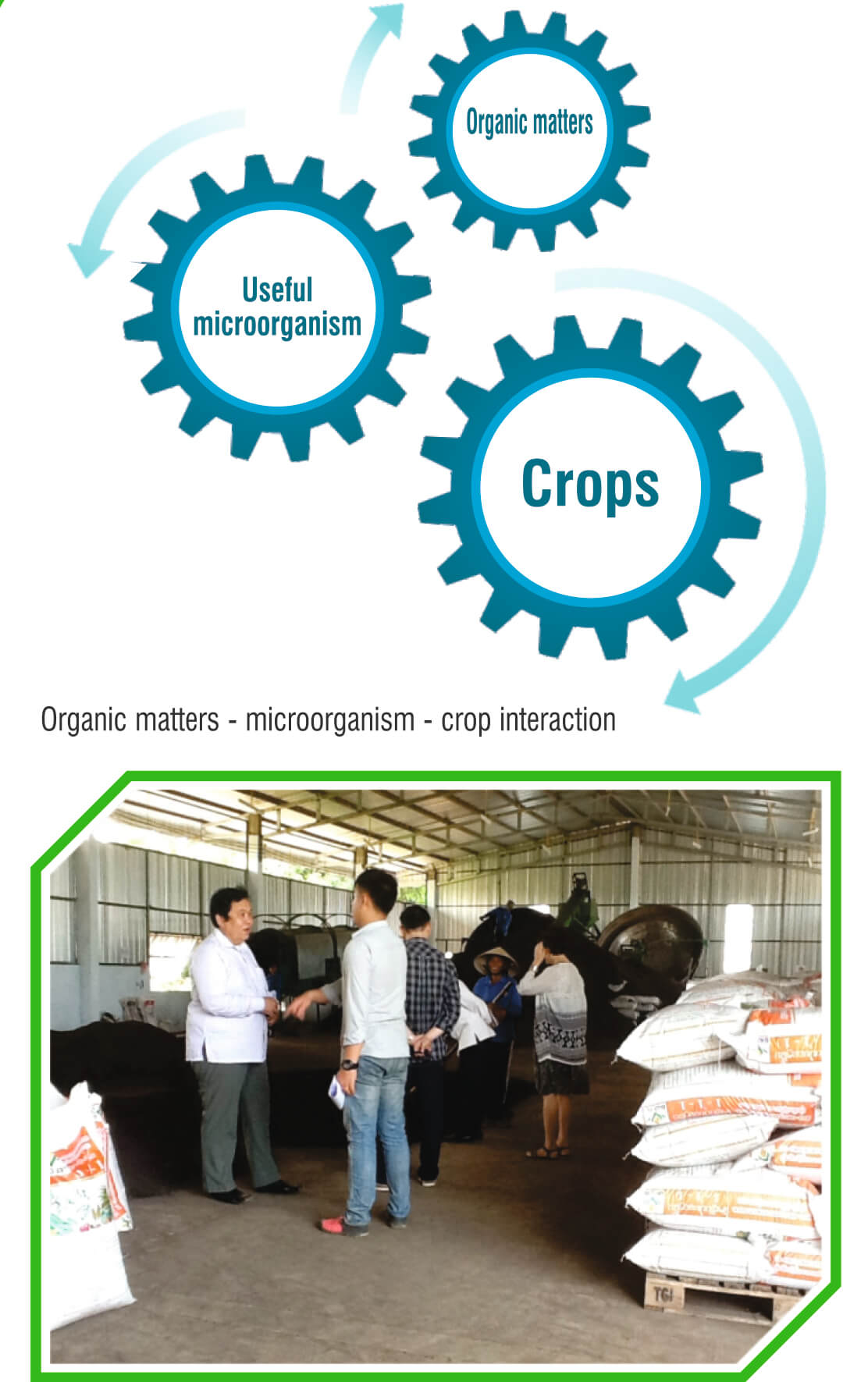 Bio-Organic Fertilizer A+ Co., TLD